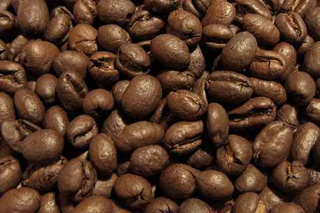 jamaica blue mountain peaberry coffee beans